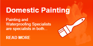 Domestic painting
